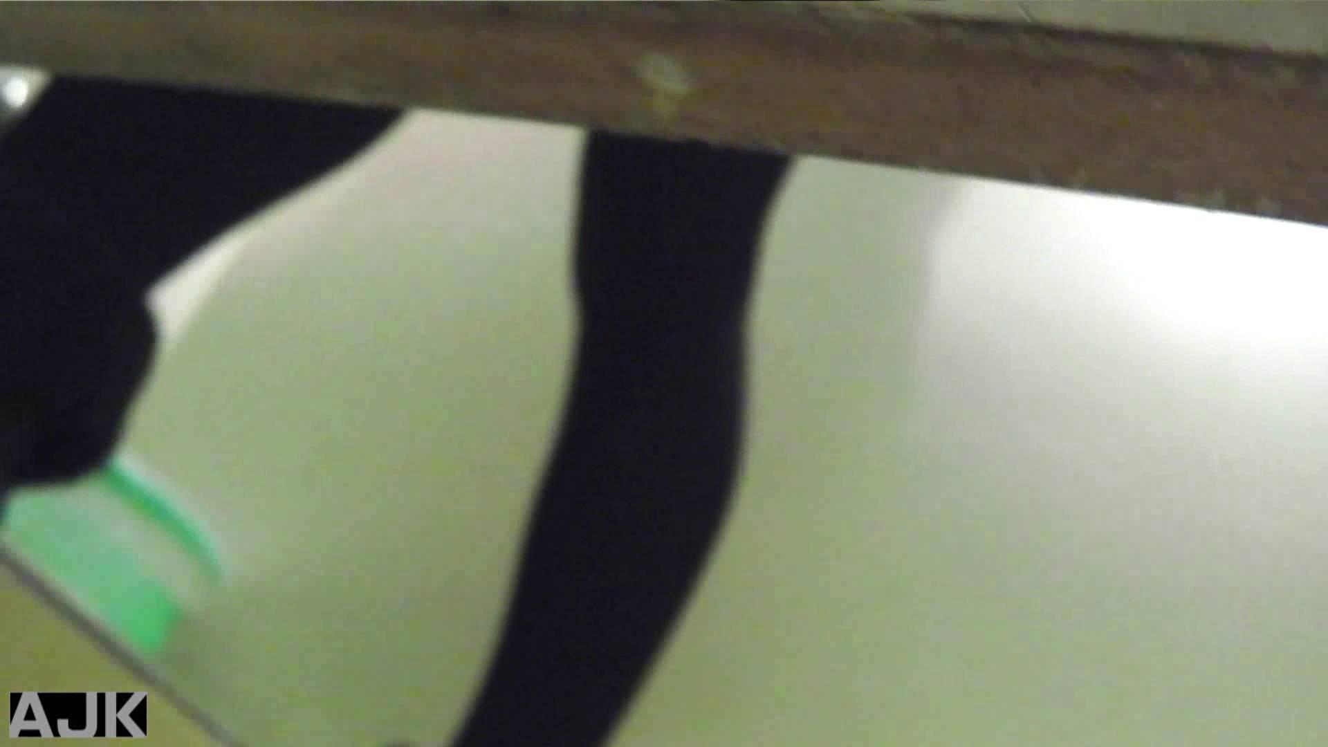 隣国上階級エリアの令嬢たちが集うデパートお手洗い Vol.14 HなOL エロ無料画像 75pic 11