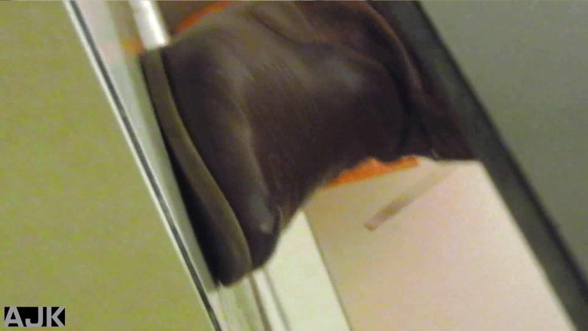 隣国上階級エリアの令嬢たちが集うデパートお手洗い Vol.16 HなOL 女性器鑑賞 85pic 47