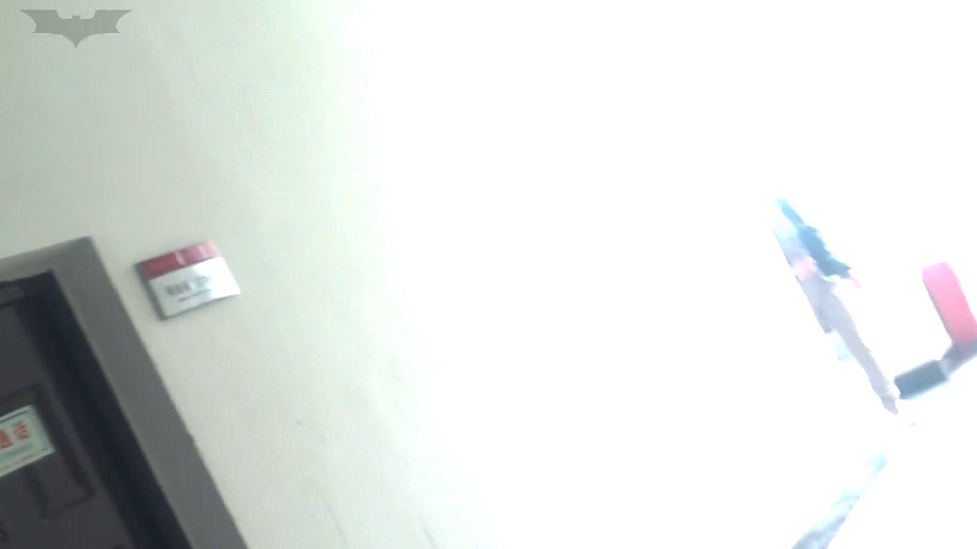 JD盗撮 美女の洗面所の秘密 Vol.05 0   0  107pic 50