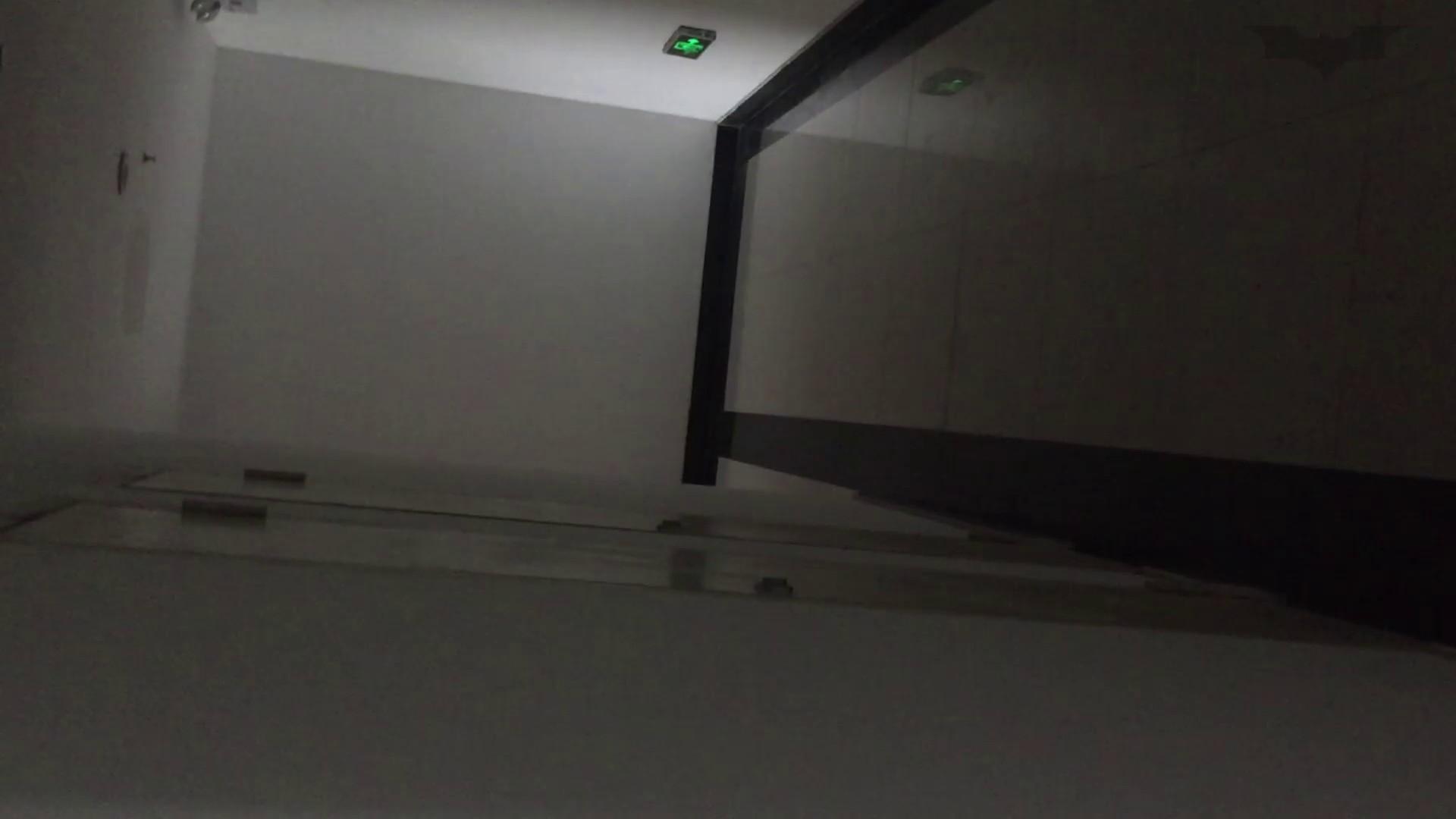 JD盗撮 美女の洗面所の秘密 Vol.68 Hな美女 盗撮動画紹介 113pic 12