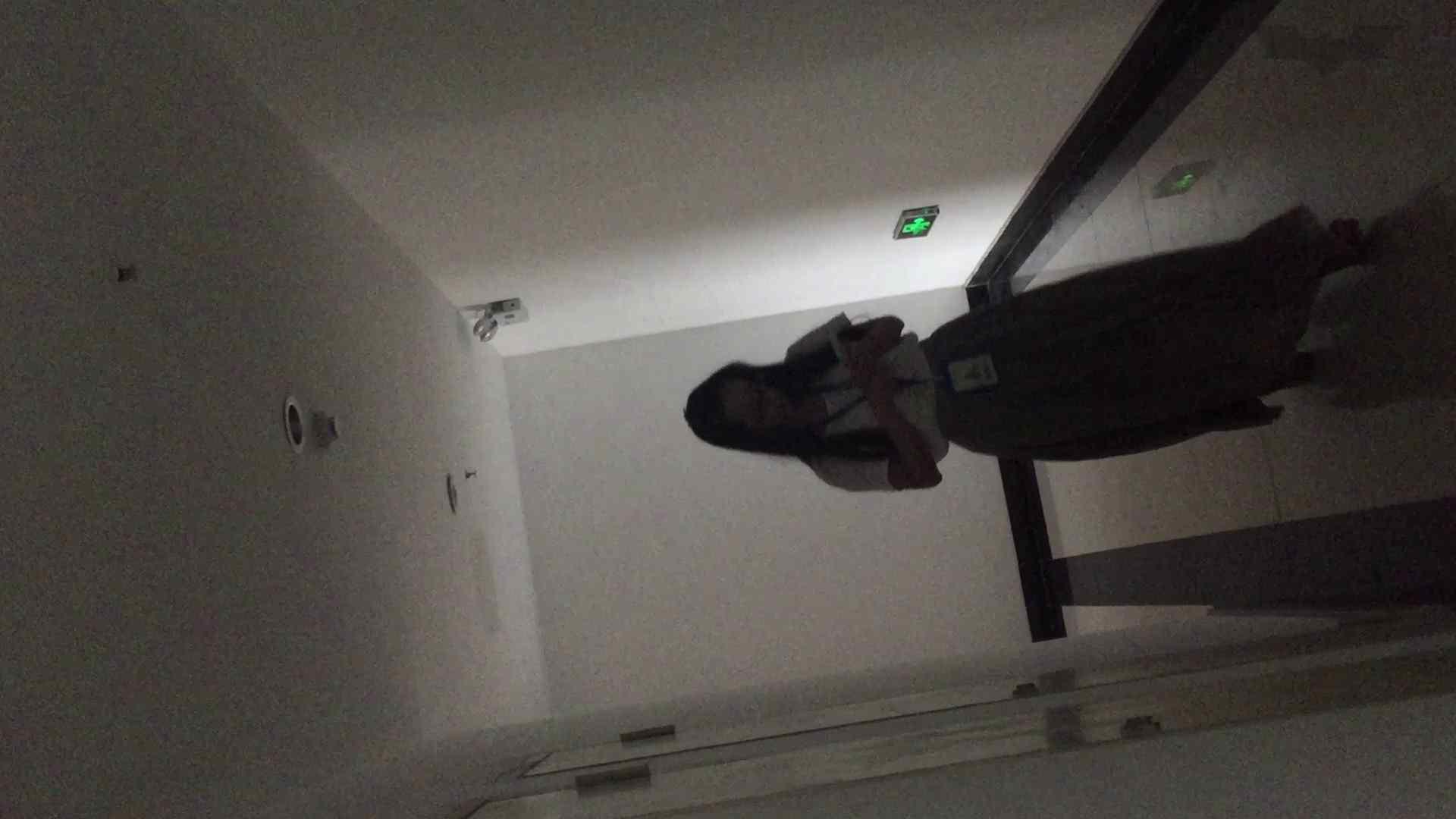 JD盗撮 美女の洗面所の秘密 Vol.68 女性トイレ おめこ無修正画像 113pic 20