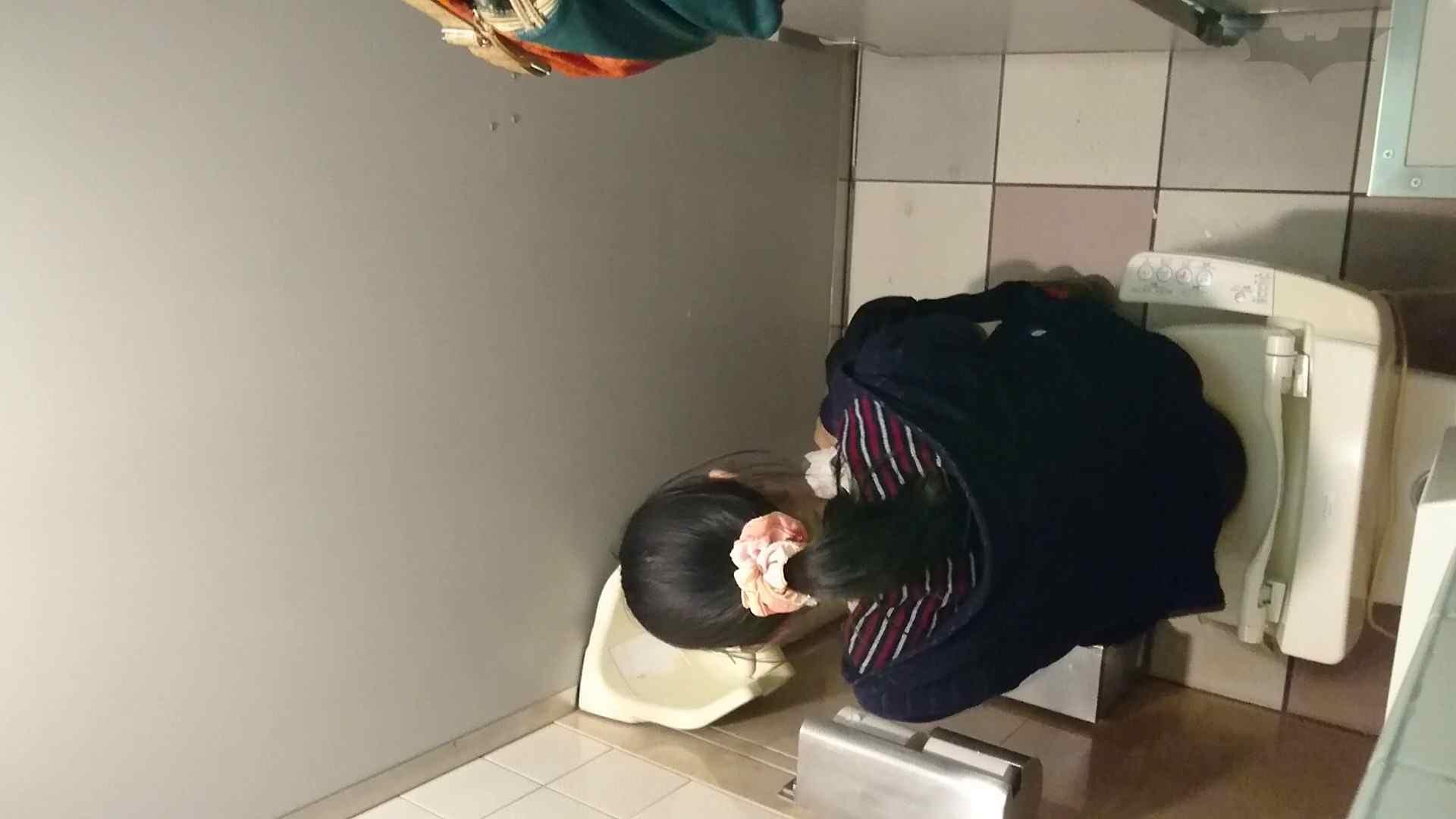 化粧室絵巻 ショッピングモール編 VOL.16 0 | HなOL  94pic 7