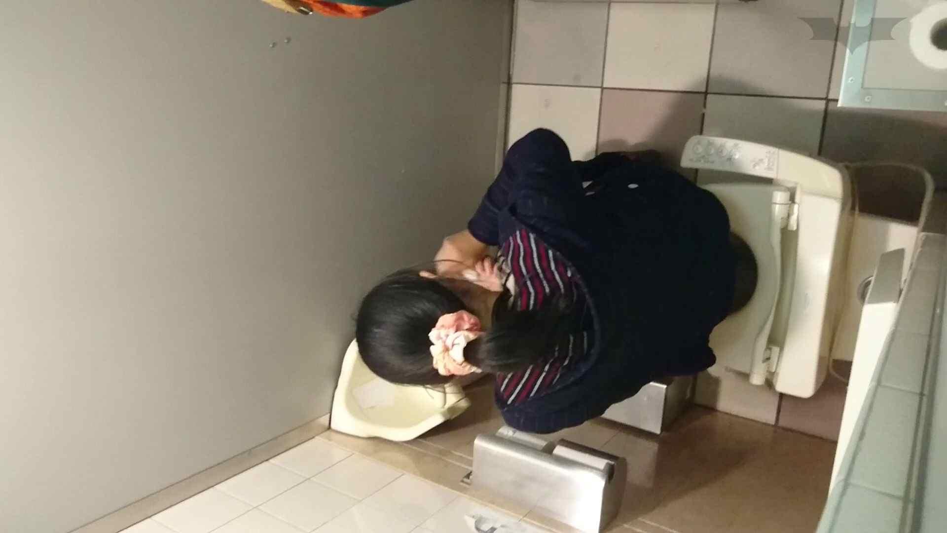 化粧室絵巻 ショッピングモール編 VOL.16 0  94pic 8