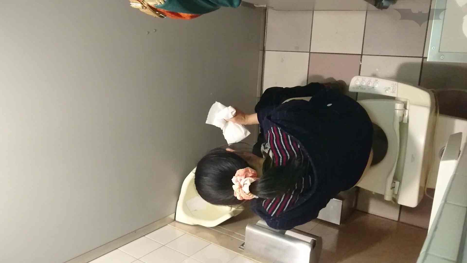 化粧室絵巻 ショッピングモール編 VOL.16 0 | HなOL  94pic 13