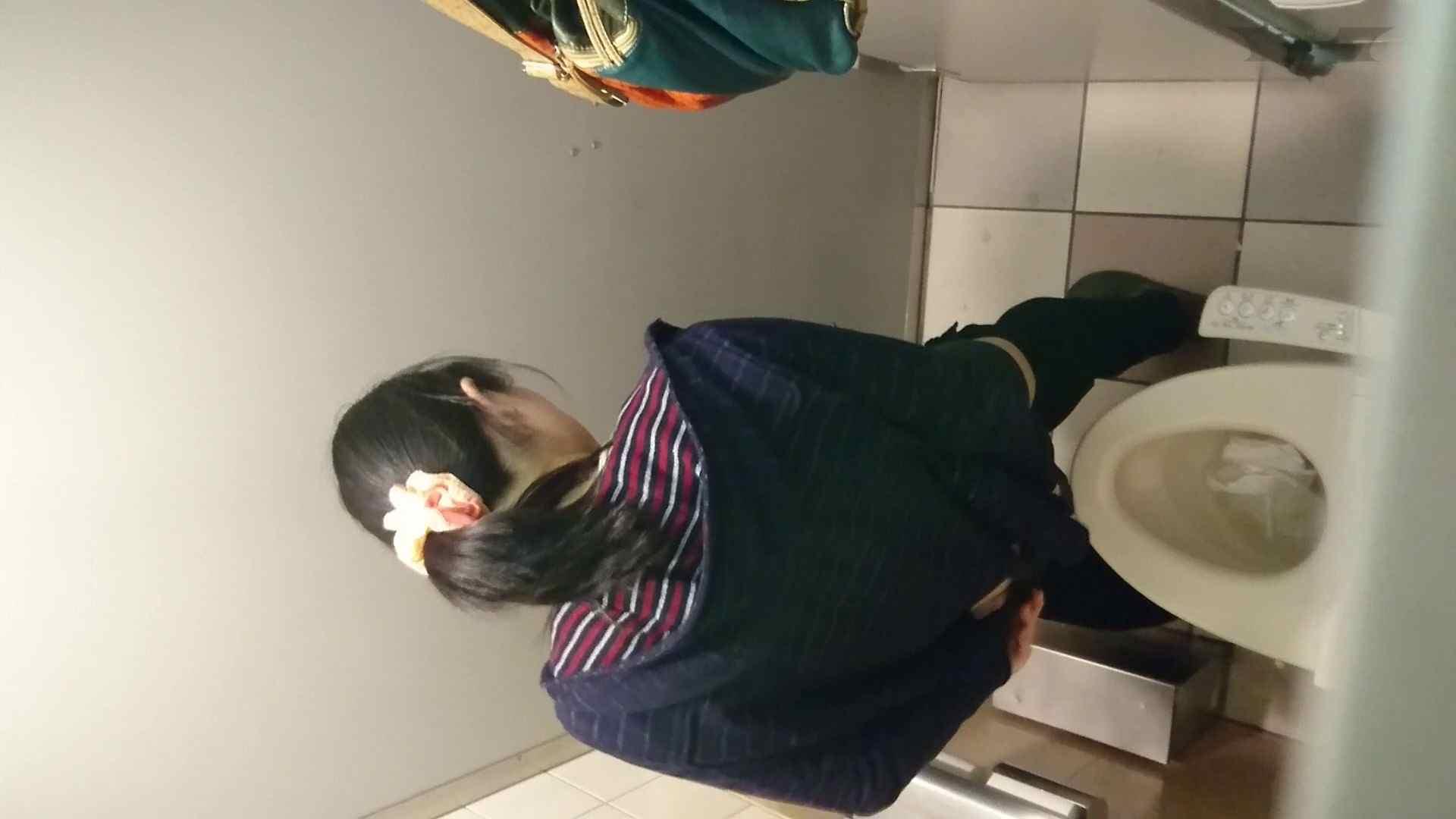 化粧室絵巻 ショッピングモール編 VOL.16 0 | HなOL  94pic 15
