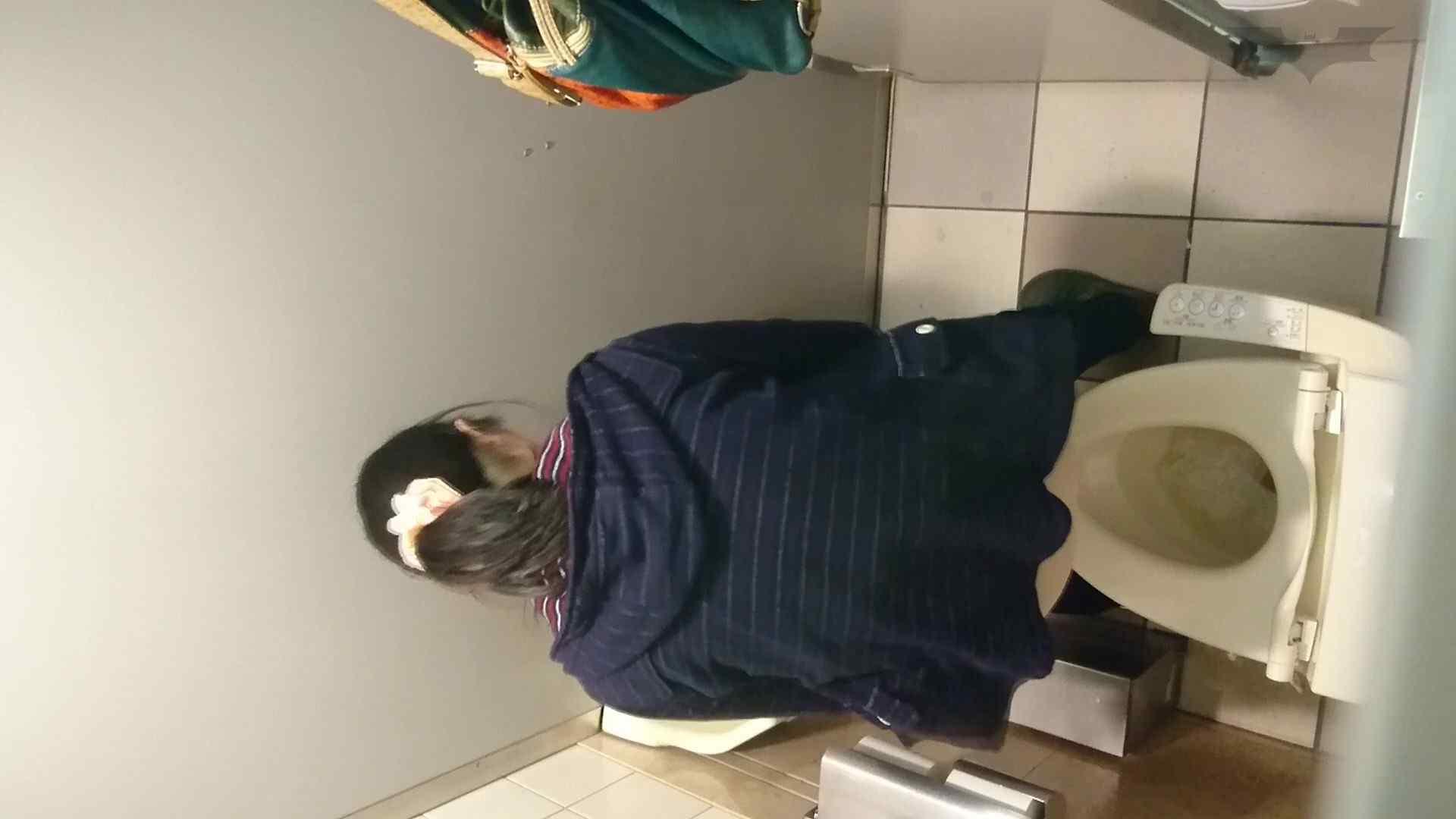 化粧室絵巻 ショッピングモール編 VOL.16 0  94pic 18