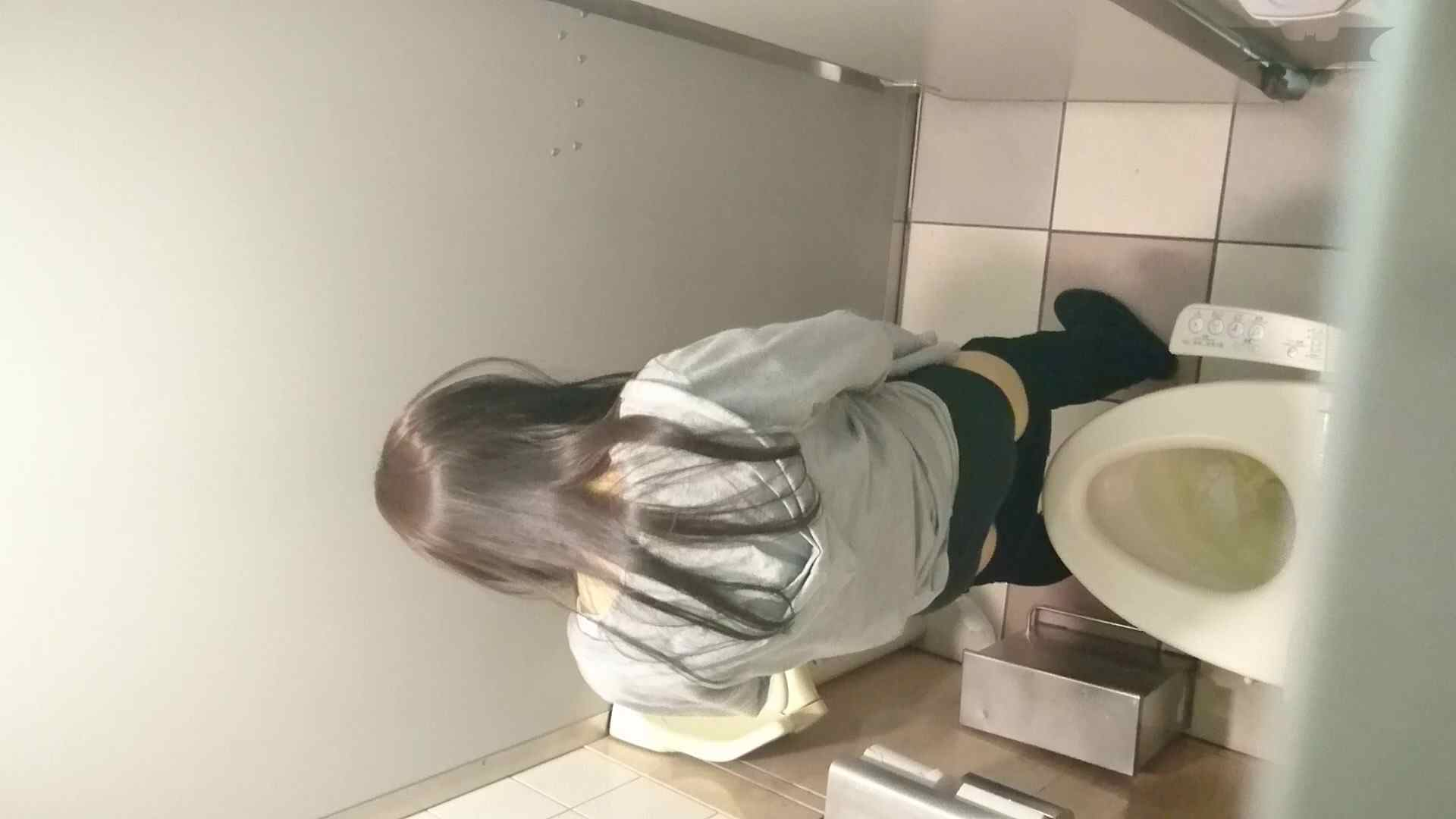 化粧室絵巻 ショッピングモール編 VOL.16 0 | HなOL  94pic 59