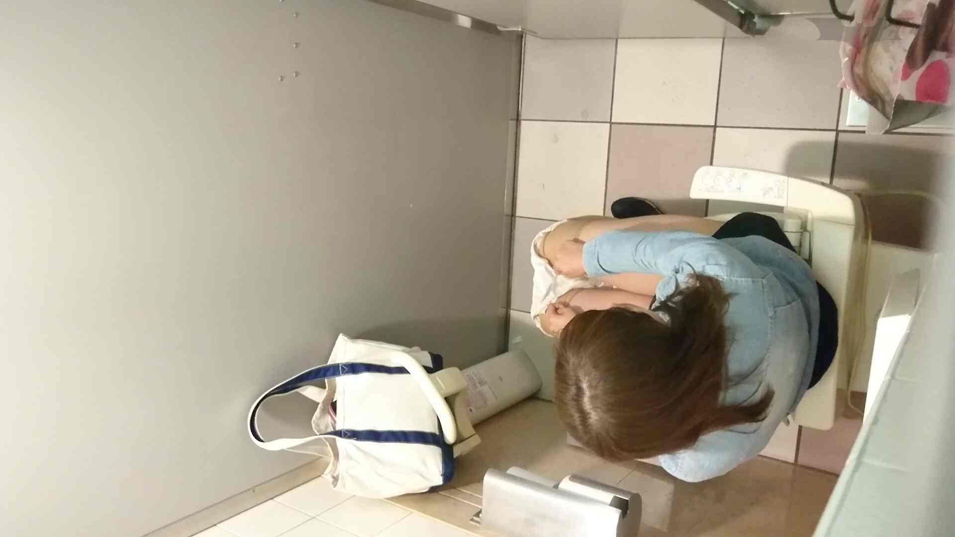 化粧室絵巻 ショッピングモール編 VOL.16 0  94pic 68
