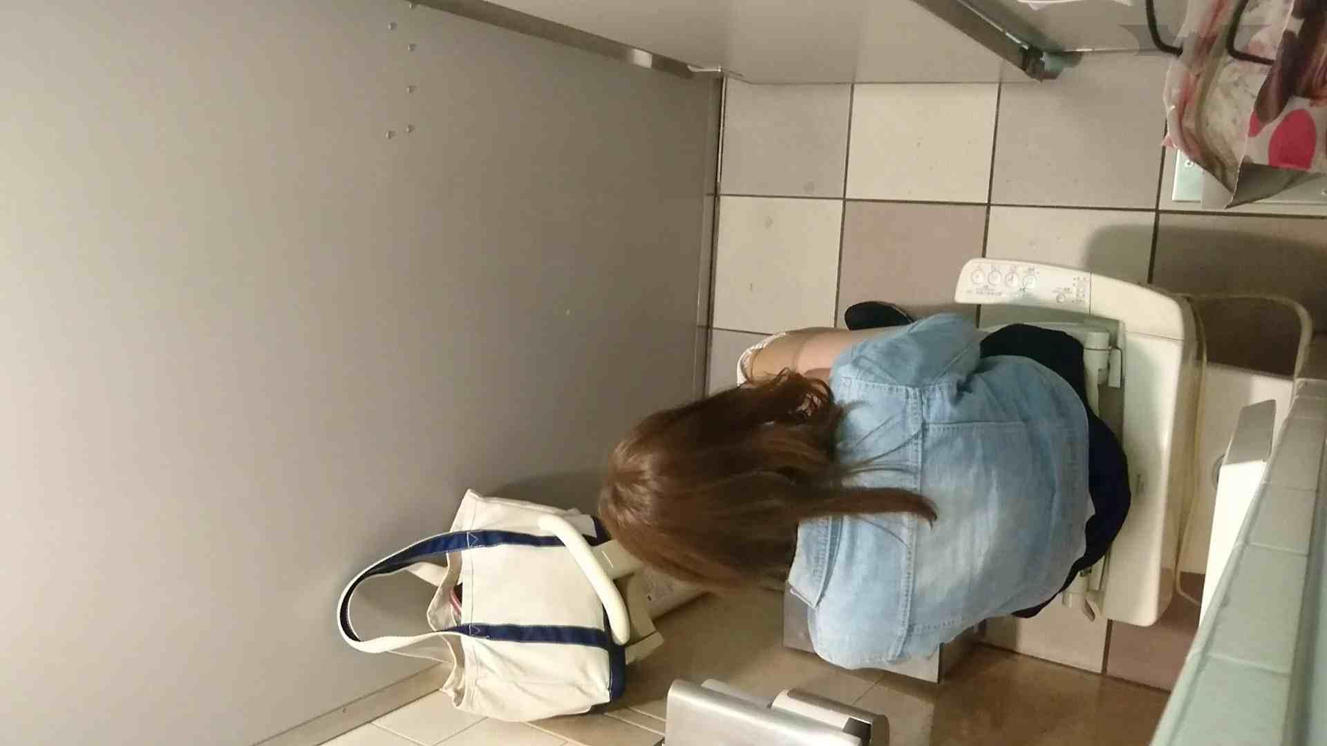 化粧室絵巻 ショッピングモール編 VOL.16 0  94pic 72