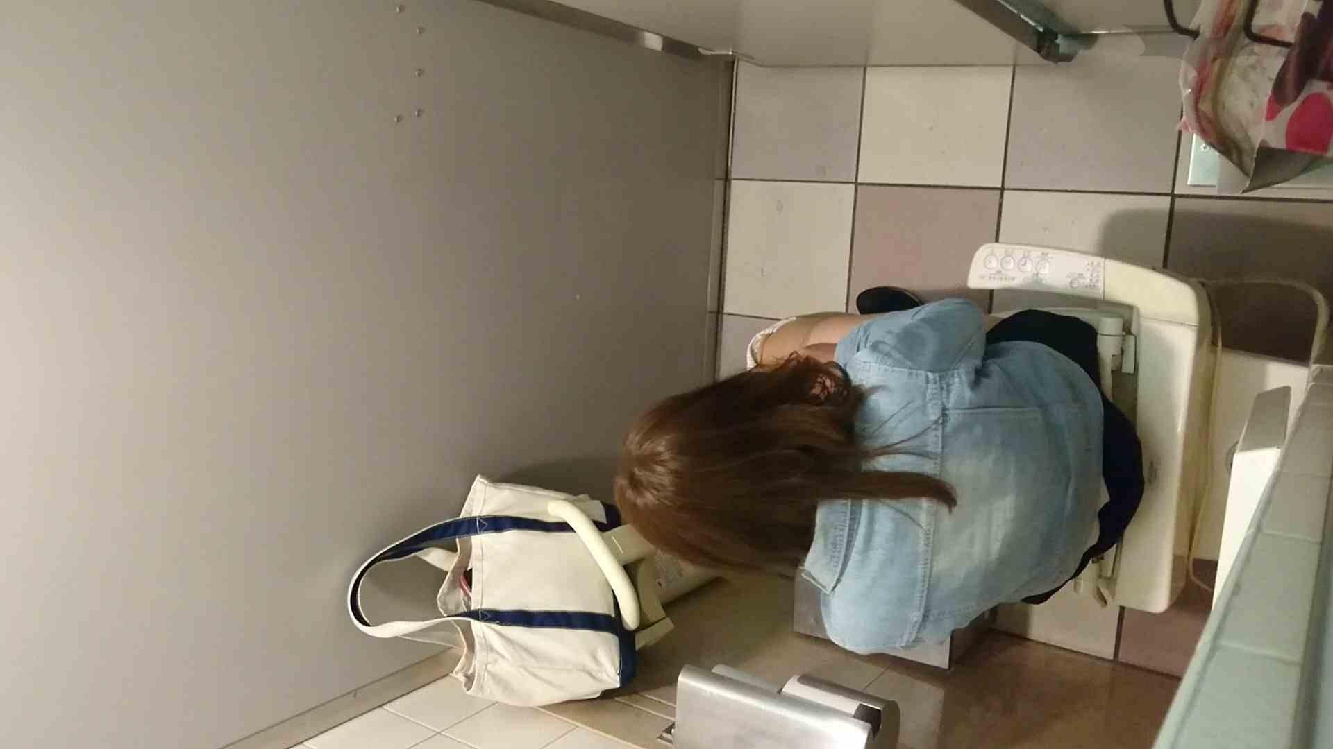 化粧室絵巻 ショッピングモール編 VOL.16 0 | HなOL  94pic 73