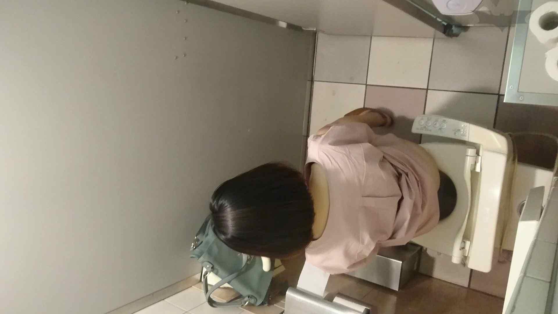 化粧室絵巻 ショッピングモール編 VOL.16 0  94pic 88