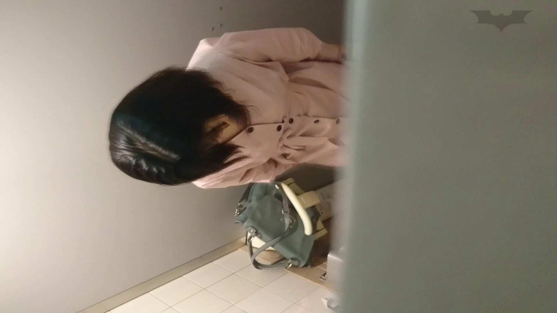 化粧室絵巻 ショッピングモール編 VOL.16 0  94pic 94