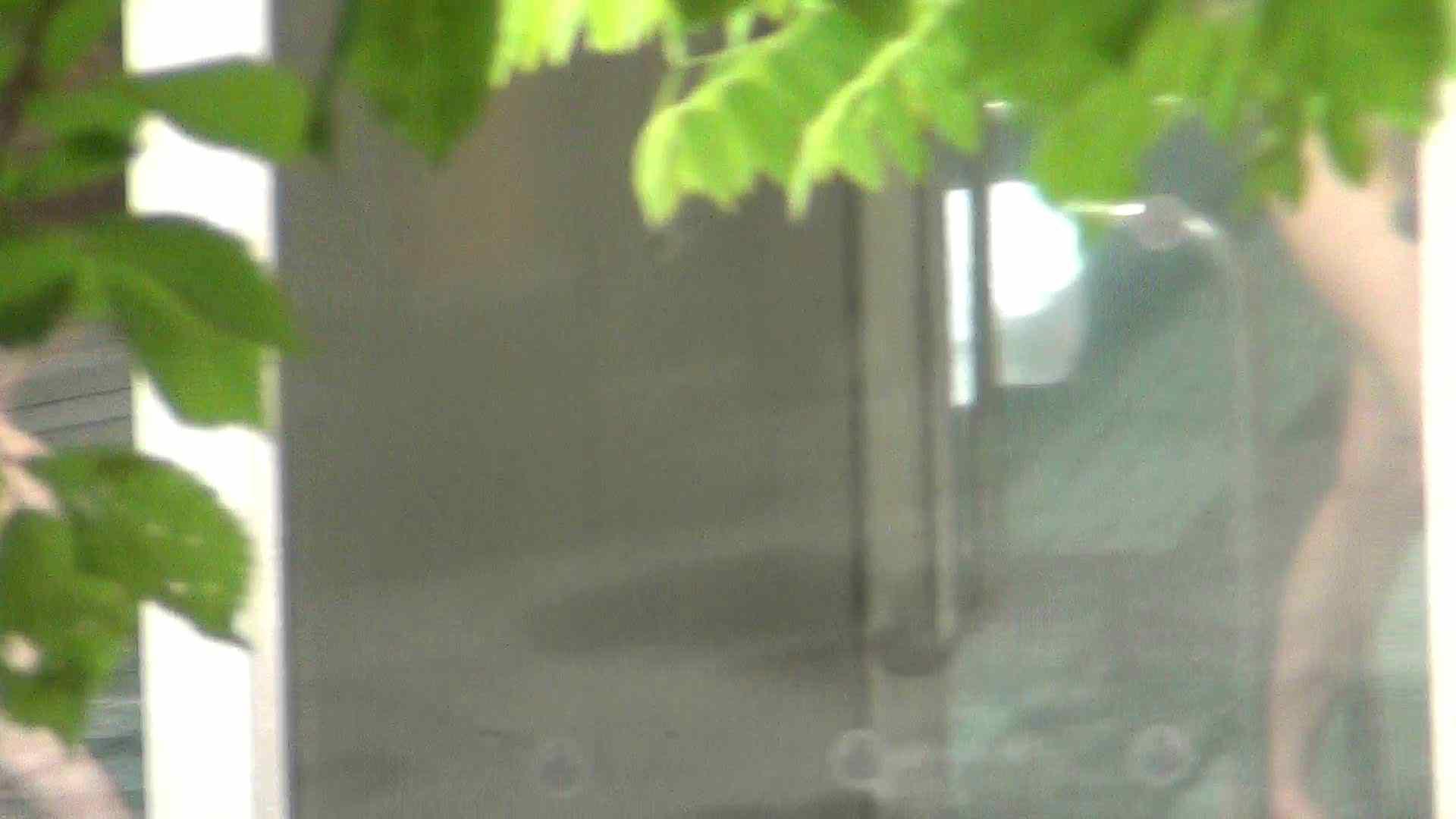 ハイビジョンVol.14 年齢とともに大きくなる心と乳首 乳首 オマンコ動画キャプチャ 100pic 4