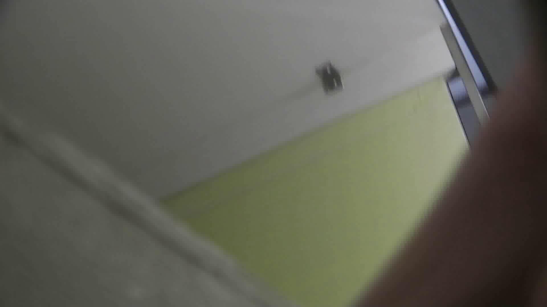 【美しき個室な世界】vol.015 特攻隊の軌跡 洗面所 おまんこ動画流出 79pic 3