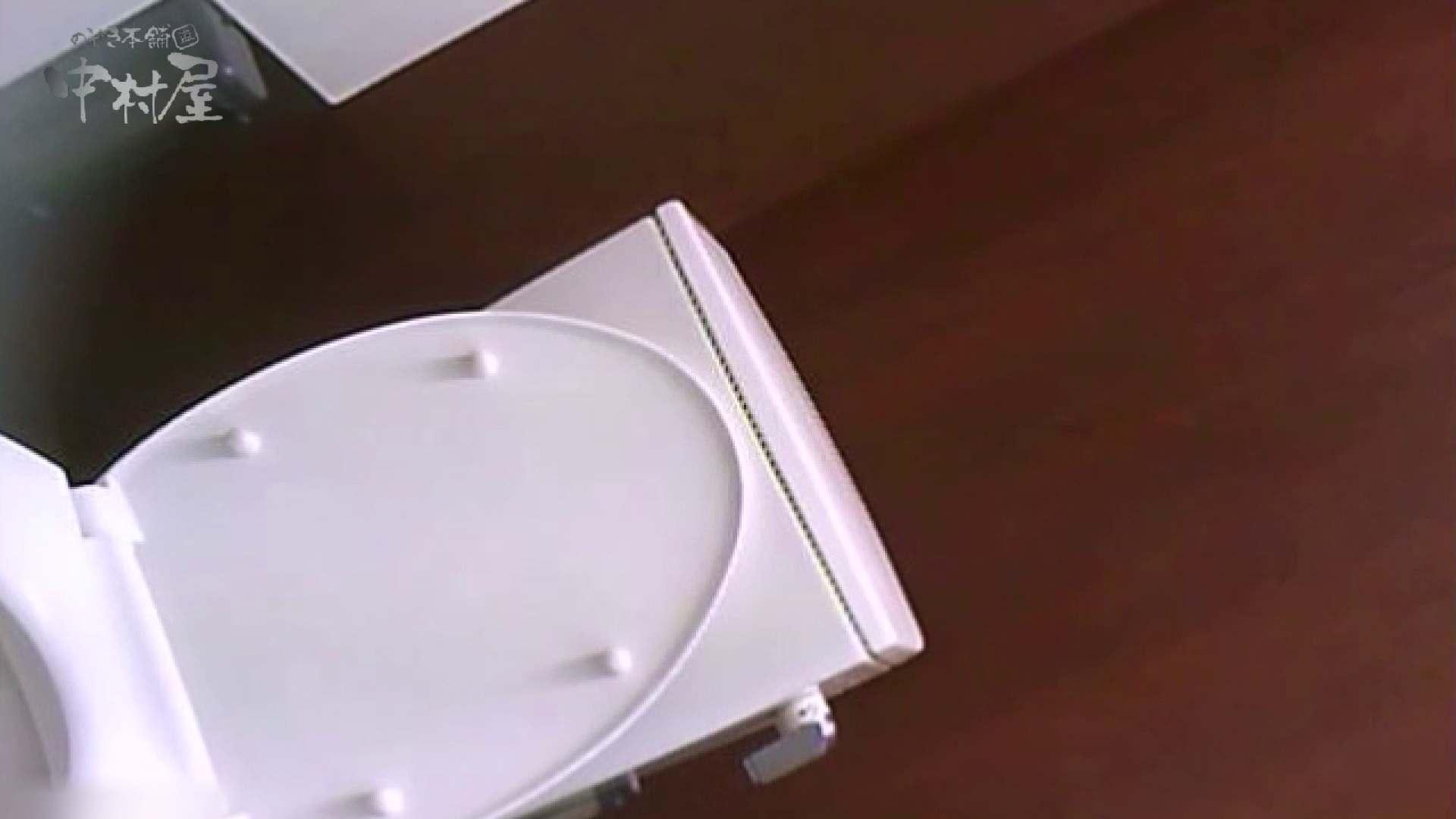女子トイレ盗撮~某ファミレス編~vol.36 潜入 AV無料動画キャプチャ 105pic 60