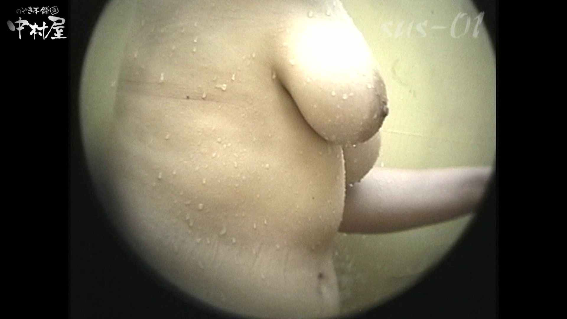 No.2 タレパイちゃんと美乳チャン。乳首の接写が中心。 美乳 セックス画像 97pic 49