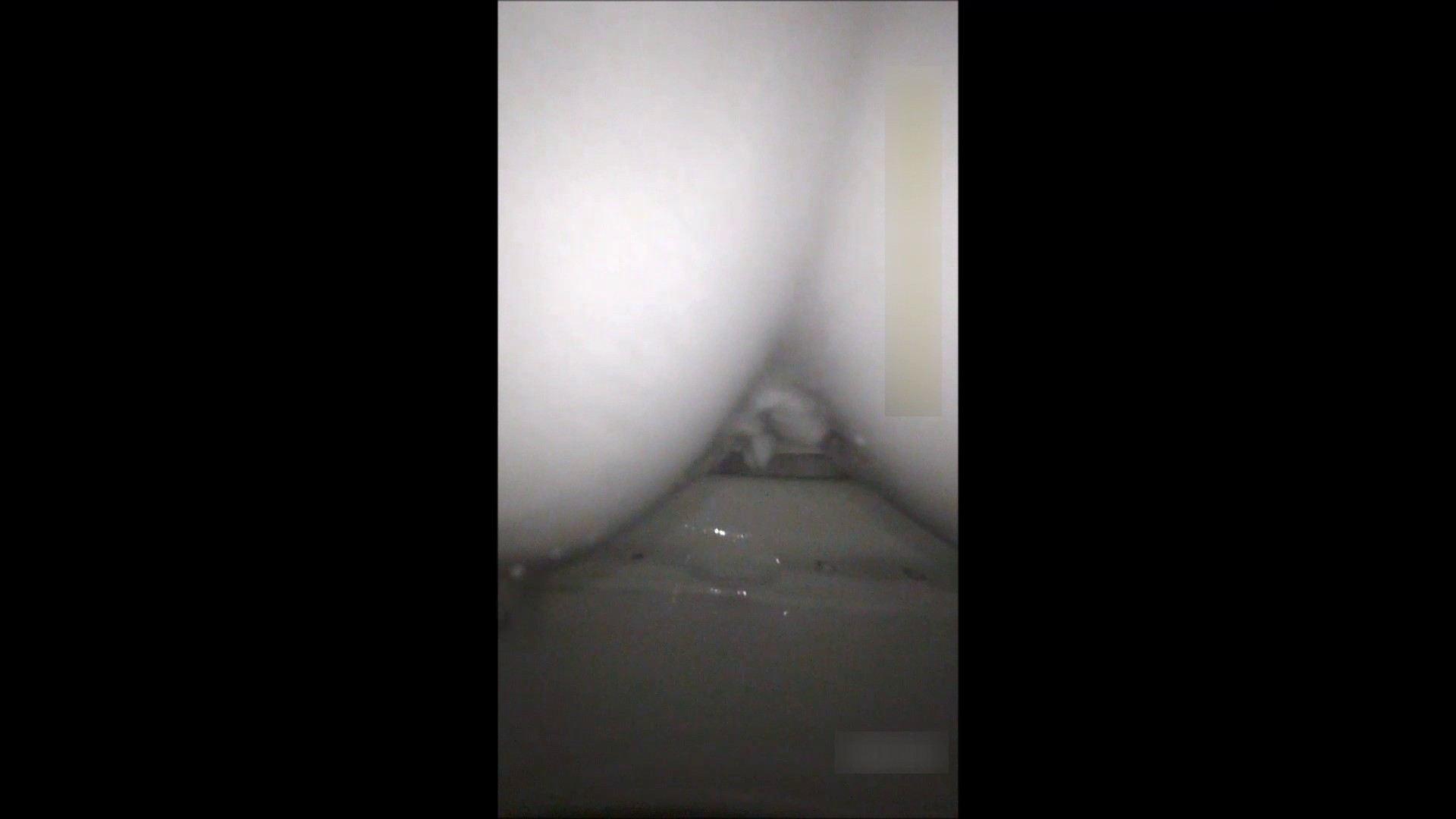 キレカワ女子大生の秘密の洗面所!Vol.051 HなOL AV無料動画キャプチャ 87pic 74