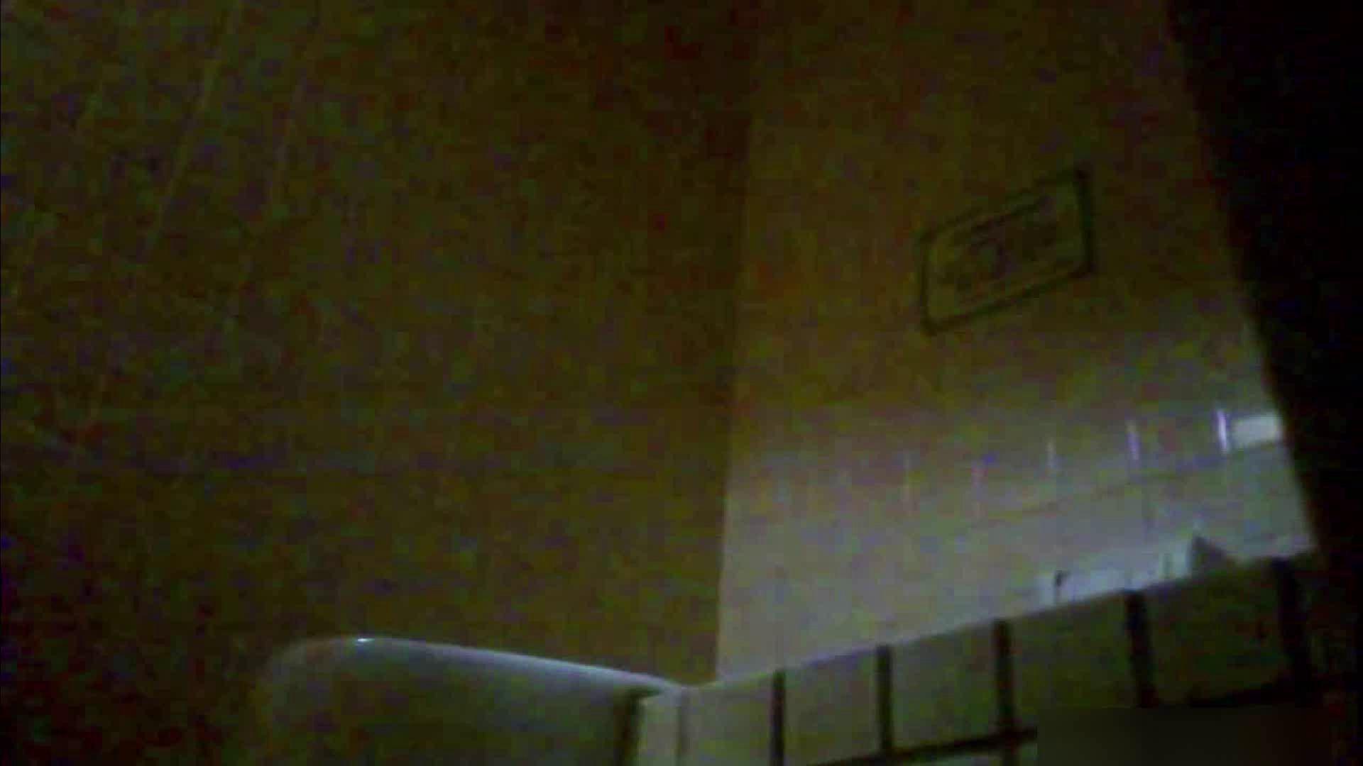 お姉さんの恥便所盗撮! Vol.15 女性トイレ おめこ無修正動画無料 112pic 77